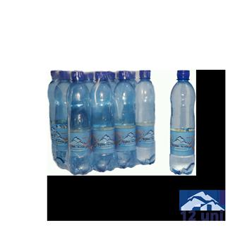 Paca botella 600 ml x12 Agua Extra